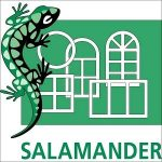 Salamander-min